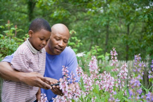Can gardening be as good as exercise?