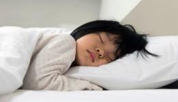 Sleep essential for child brain development