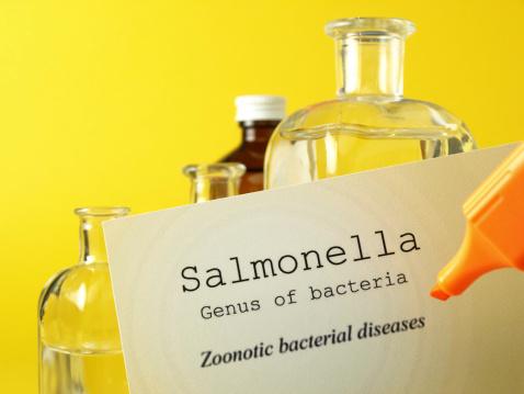 USDA launches salmonella action plan
