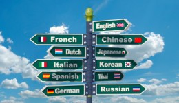 Bilingual brains may age more slowly