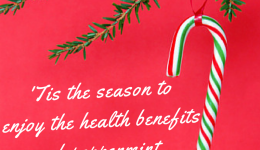 Infographic: Health benefits of peppermint