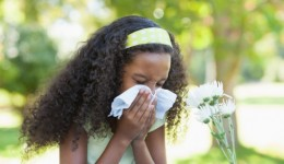 Pollution exposure increases risk of allergies in kids