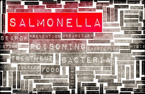 Infographic: 3 tips to prevent food poisoning