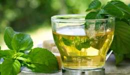 How green tea can lower risk of prostate cancer