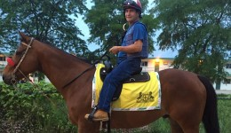 Hip replacement helps jockey get back in the saddle