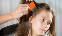 Some head lice are now resistant to treatments