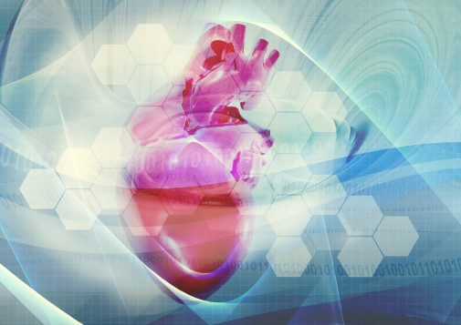 TAVR heart procedure improves one man's quality of life