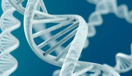 Demand for genetic counselors growing