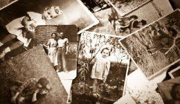 Understanding your family health genealogy