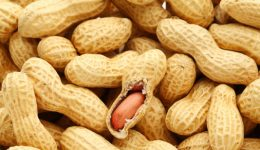 Is this the cure for peanut allergies?