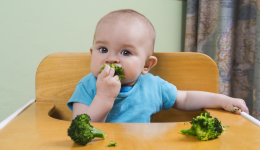 Are Americans feeding their babies solid foods too soon?