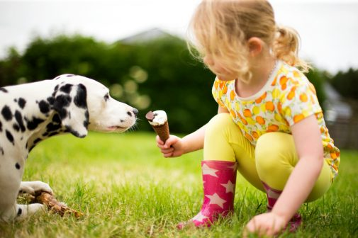 6 things you should teach your child about dogs