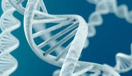 A gene fix for Alzheimer's disease?