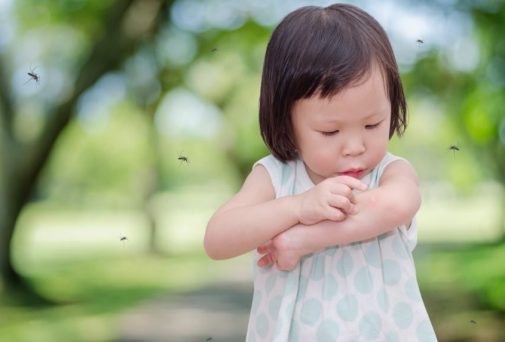 5 simple remedies to treat mosquito bites
