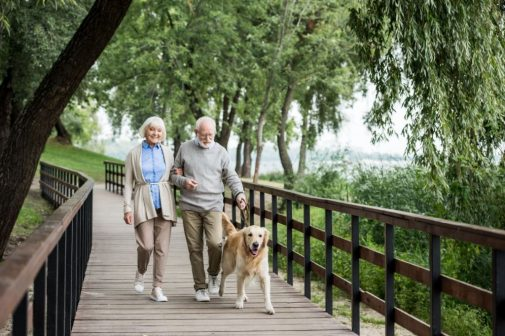 How dogs could pose a risk for older Americans